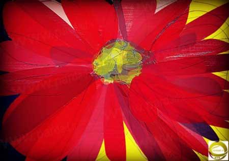 http://parvanegiha.persiangig.com/parsplanet/golchin/7/a-50.jpg